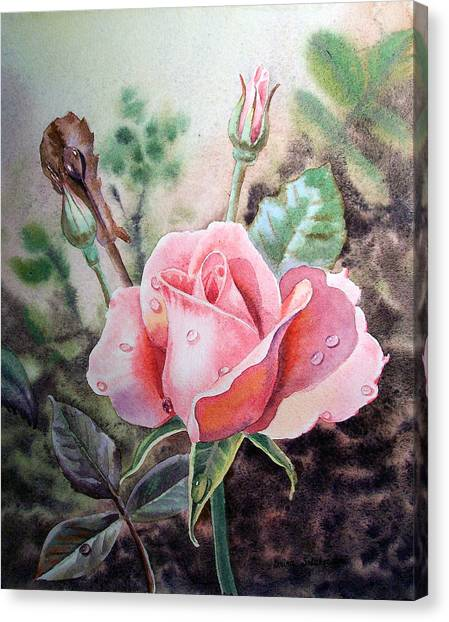 Red Roses Canvas Print - Pink Rose With Dew Drops by Irina Sztukowski