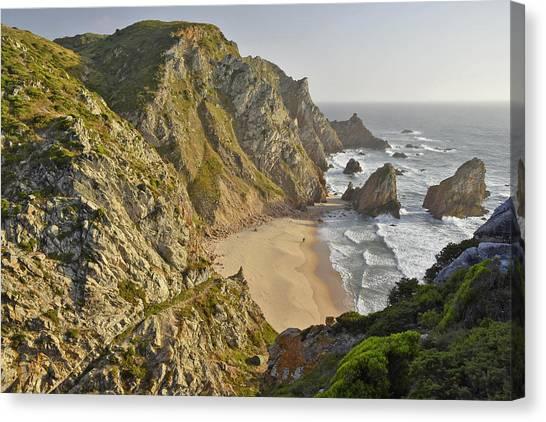 Rugged Coastline Canvas Print