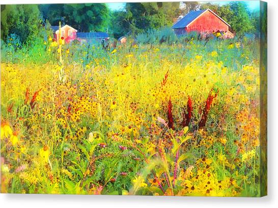 Prairie Farm House Canvas Print