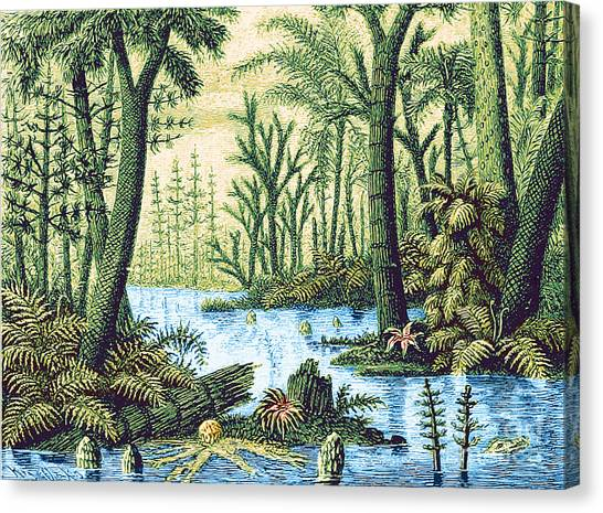 Carboniferous Period Canvas Prints Fine Art America