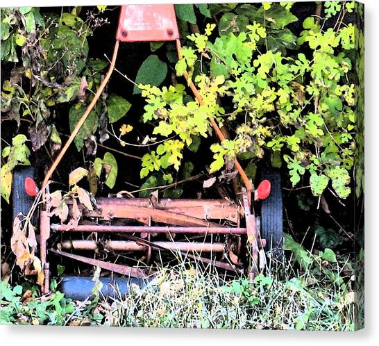 Push Mower Canvas Print by Gary Everson