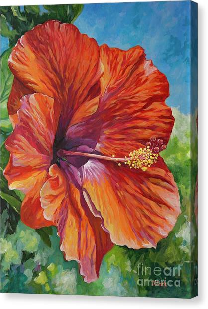 Hibiscus Canvas Print - Red Hibiscus by John Clark