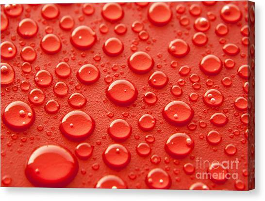 Organic Canvas Print - Red Water Drops by Blink Images