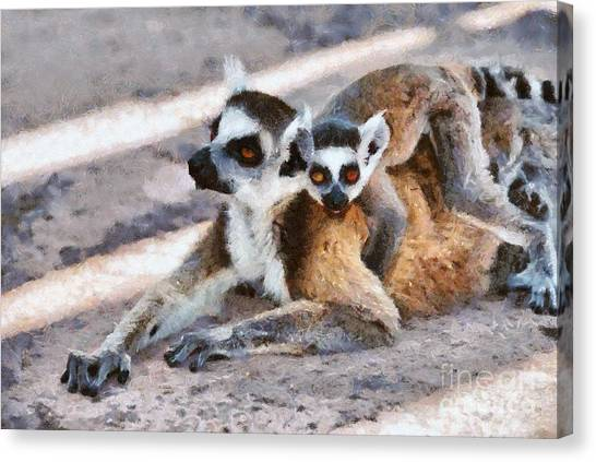 Ring-tailed Lemur Canvas Print - Ring Tailed Lemur With Baby by George Atsametakis