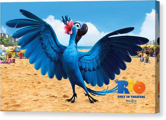 Pheasants Canvas Print - Rio by Super Lovely