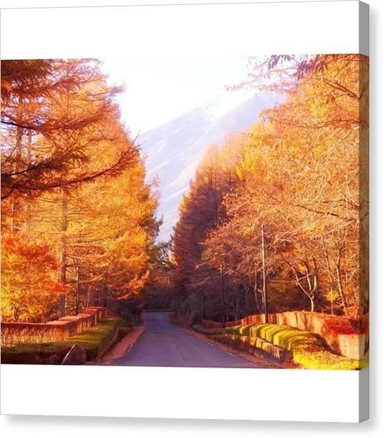 Fairies Canvas Print - Road Of Autumn Leaves by Kanna Fairy
