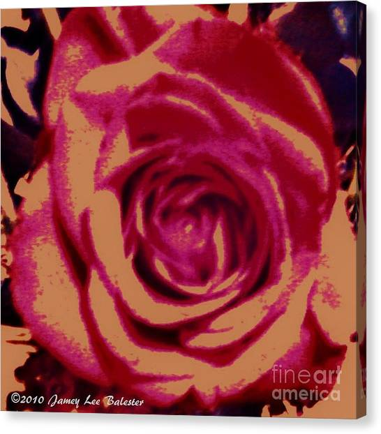 Rose Canvas Print by Jamey Balester