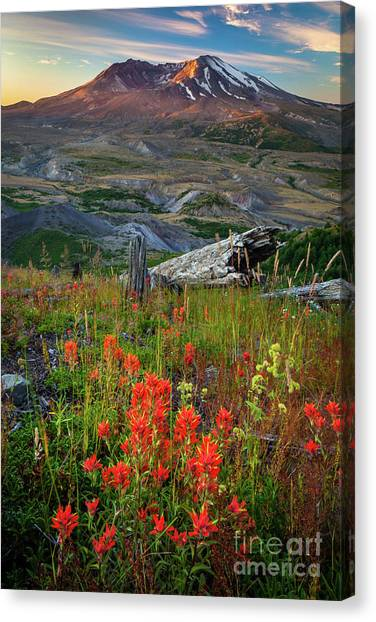 Mount St. Helens Canvas Print - Saint Helens Paintbrushes by Inge Johnsson