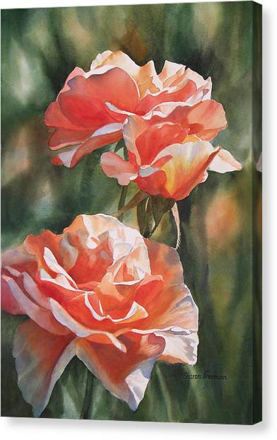 Salmon Colored Roses Canvas Print by Sharon Freeman