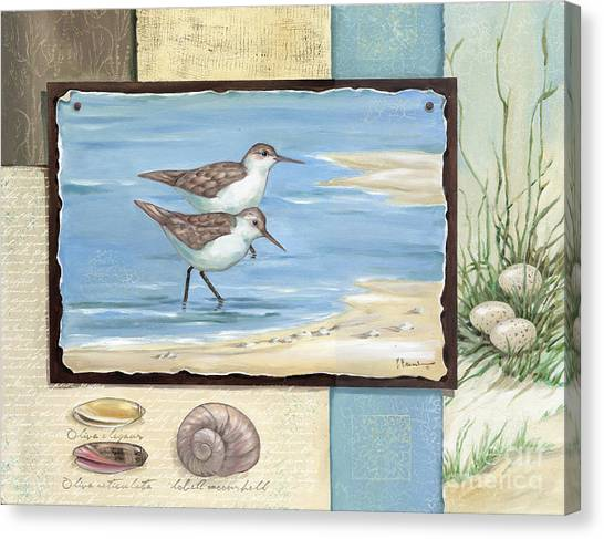 Sandpipers Canvas Print - Sandpiper Collage I by Paul Brent