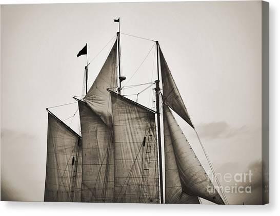 Jibbing Canvas Print - Schooner Pride Tall Ship Charleston Sc by Dustin K Ryan