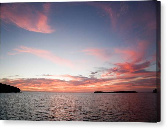 Sea Of Cortez Canvas Print by Richard Steinberger