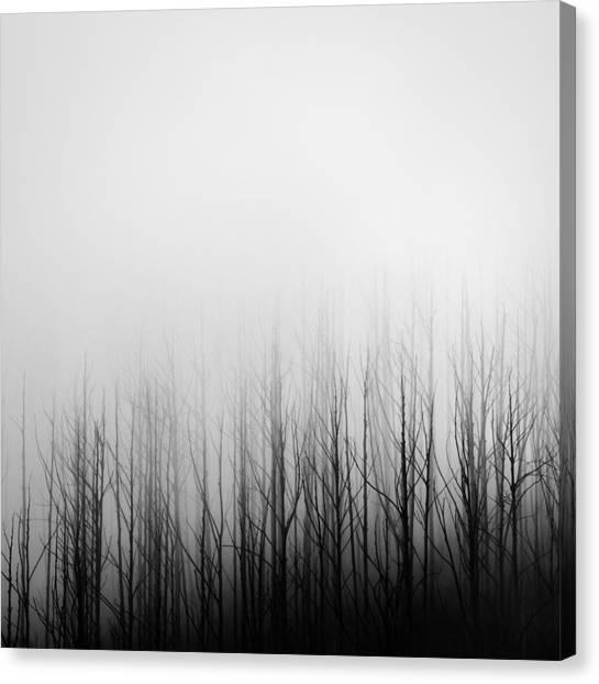 Skeleton Trees 3 Canvas Print