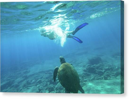 Snorkeler Female Sea Turtle Canvas Print