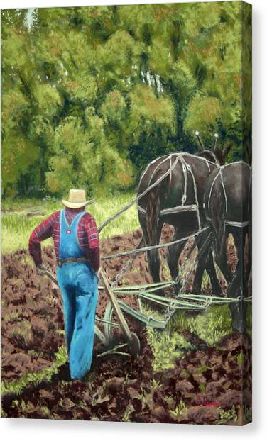 Sod Buster Canvas Print by Carl Capps