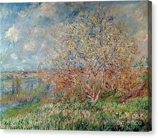 French Impressionist Canvas Print - Spring by Claude Monet