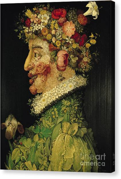 Raspberries Canvas Print - Spring by Giuseppe Arcimboldo