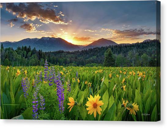 Spring's Delight Canvas Print by Leland D Howard