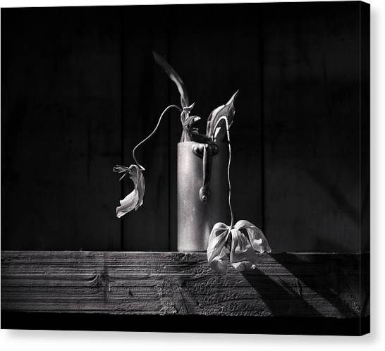 Milk Canvas Print - Still Life With Tulip by Nailia Schwarz