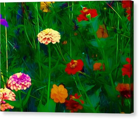 Border Wall Canvas Print - Summer In The Country by Debra Lynch