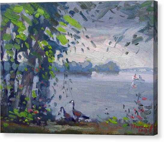 Ducks Canvas Print - Sunset At Goat Island by Ylli Haruni
