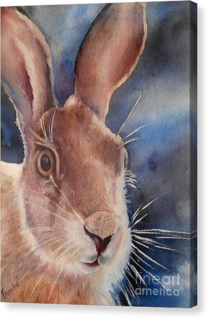 March Hare Canvas Print - Surprise by Patricia Pushaw