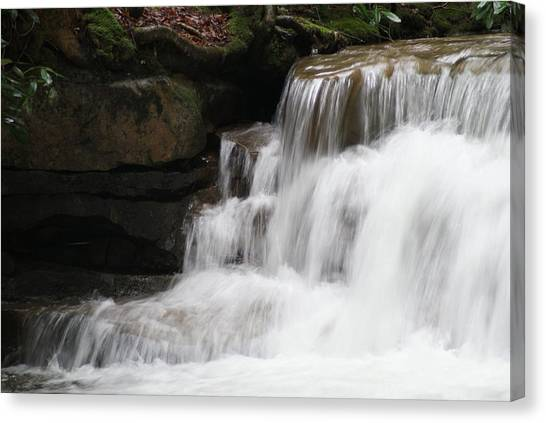 Swallow Falls Canvas Print by Heather Green