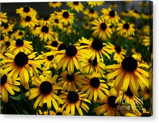 Sweet Flowers Canvas Print