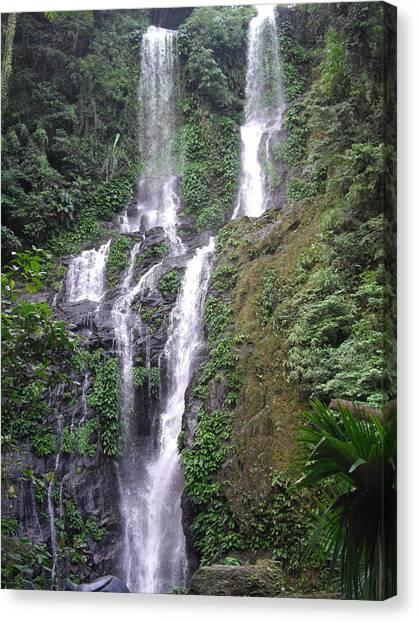 Tamaraw Falls Photograph By Robert Cunningham