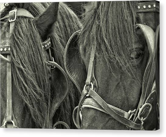 Teamwork Together Canvas Print by JAMART Photography