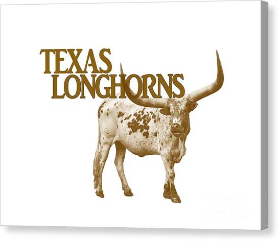 Western Conference Canvas Print - Texas Longhorns by Priscilla Burgers