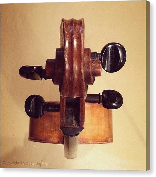 String Instrument Canvas Print - The Cello Box  by Steven Digman