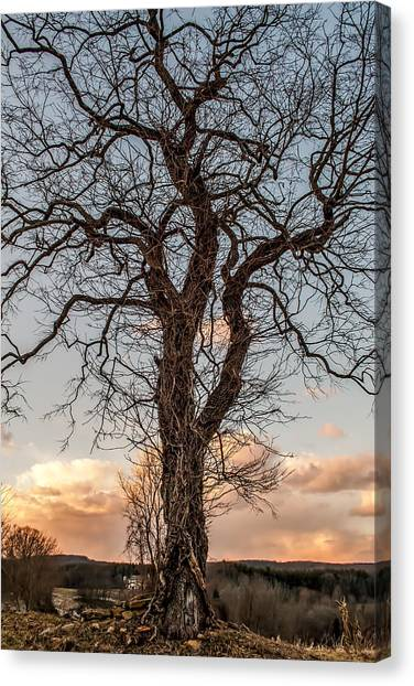 The End Of Another Day Canvas Print