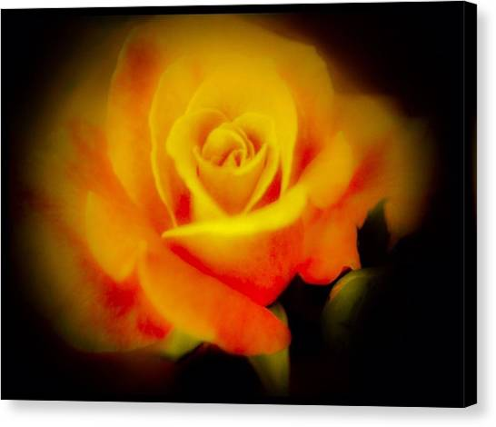 Border Wall Canvas Print - The Glow From Within by Debra Lynch