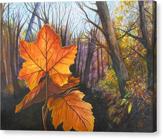 The Last Of Autumn Canvas Print by Carrie Auwaerter