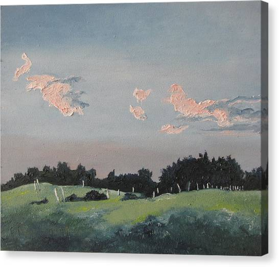 The Pink Clouds Canvas Print by Francois Fournier