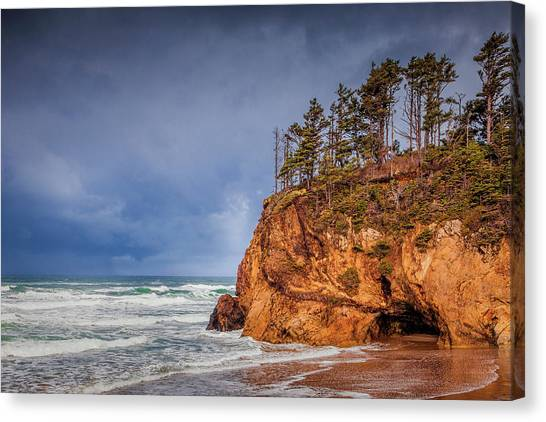 The Remote Coast Canvas Print by Andrew Soundarajan
