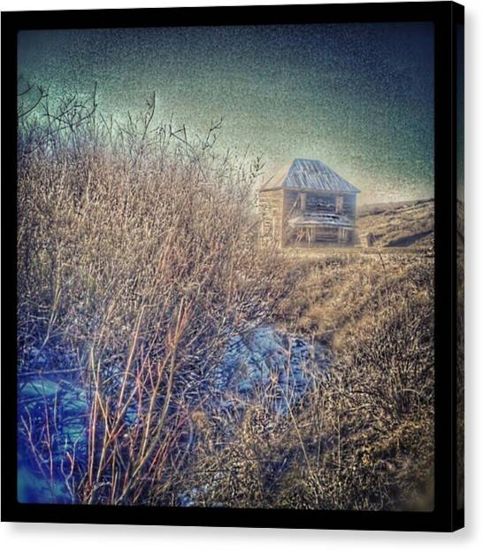 Roosters Canvas Print - This #abandoned #ranch #house Just Off by Ron Meiners