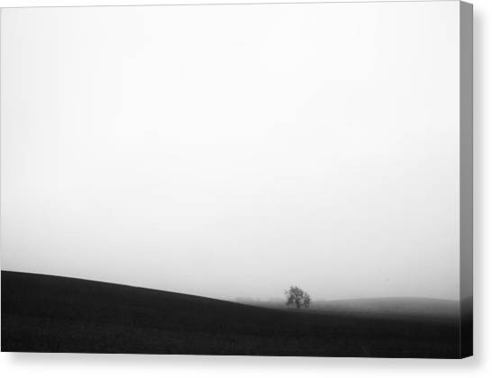 Through The Mist Canvas Print