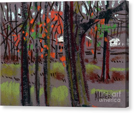 Thru The Trees Canvas Print by Donald Maier