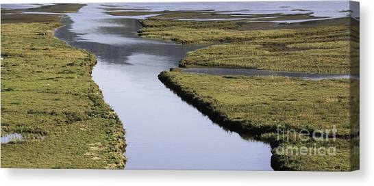 Tomales Marsh Canvas Print