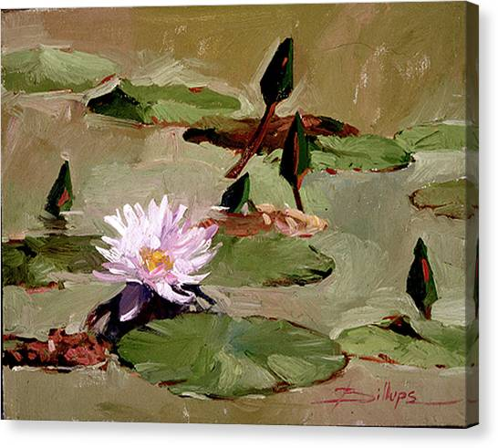 Tomorrow's Blooms- Water Lilies Canvas Print