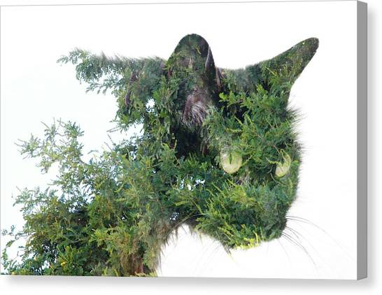 Tree Cat Canvas Print