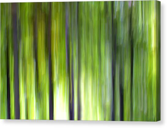 Decorativ Canvas Print - Trees by Silke Magino