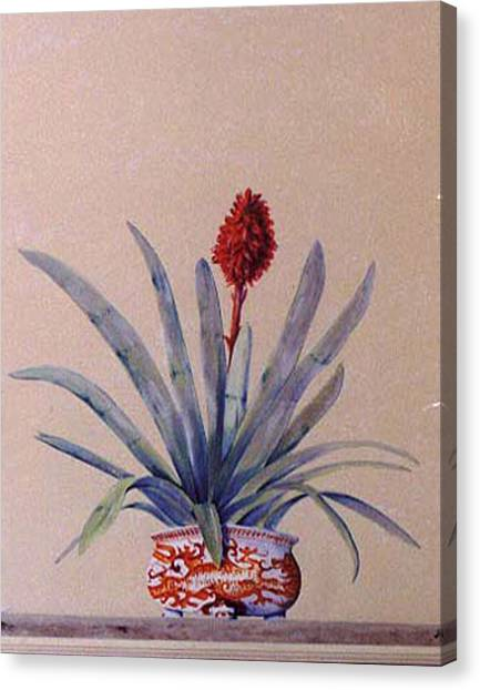 Canvas Print featuring the painting Trompe L'oeil  by Thomas Lupari