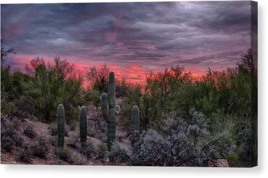 Tucson Sunset Canvas Print