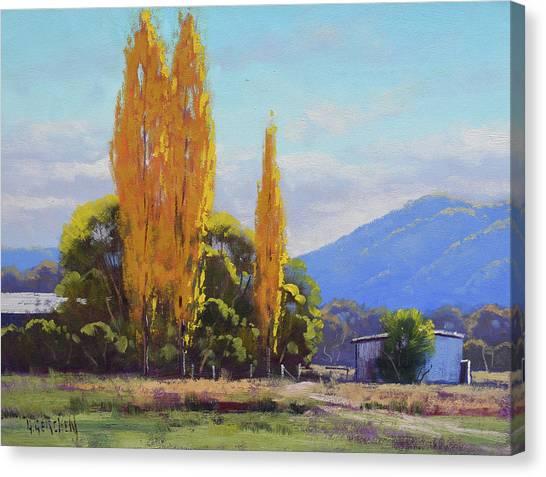 Autumn Scenes Canvas Print - Tumut Autumn Poplars by Graham Gercken