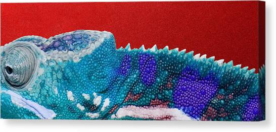 Bright Canvas Print - Turquoise Chameleon On Red by Serge Averbukh