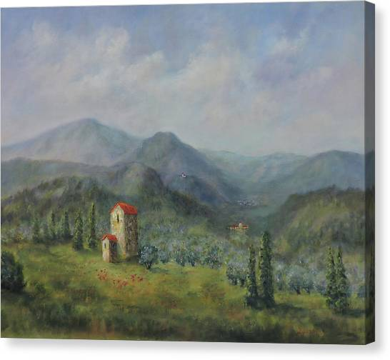 Tuscany Italy Olive Groves Canvas Print