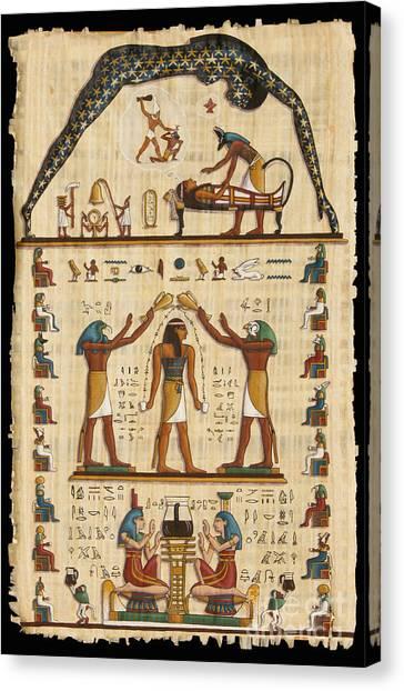 Twokupamun Papyrus Canvas Print